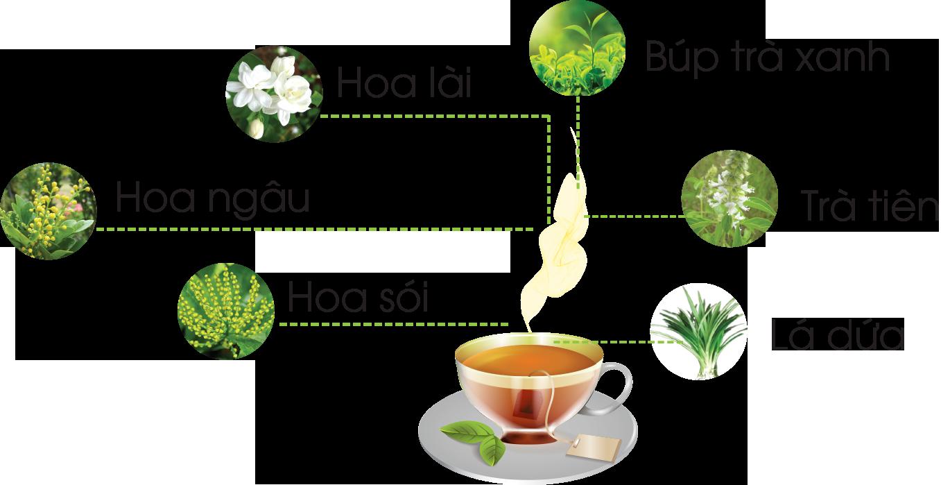 Thành phần của trà sâm dứa
